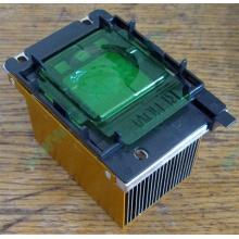 Радиатор HP p/n 279680-001 (socket 603/604) - Белгород