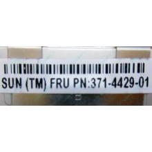 Серверная память SUN (FRU PN 371-4429-01) 4096Mb (4Gb) DDR3 ECC в Белгороде, память для сервера SUN FRU P/N 371-4429-01 (Белгород)