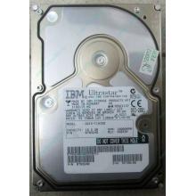 Жесткий диск 18.2Gb IBM Ultrastar DDYS-T18350 Ultra3 SCSI (Белгород)